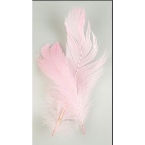 Feathers 2pc Light Pink