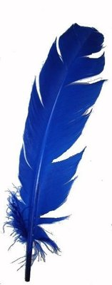Feathers 2pc Blue