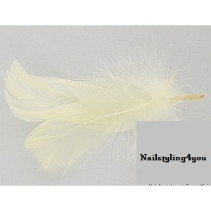 Feathers 2pc off White