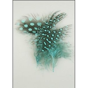 Feathers 2pc Black Green