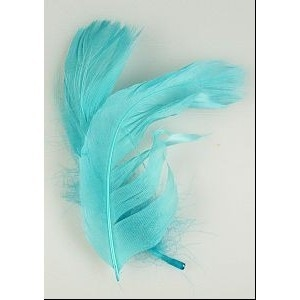 Feathers 2pc Light Blue